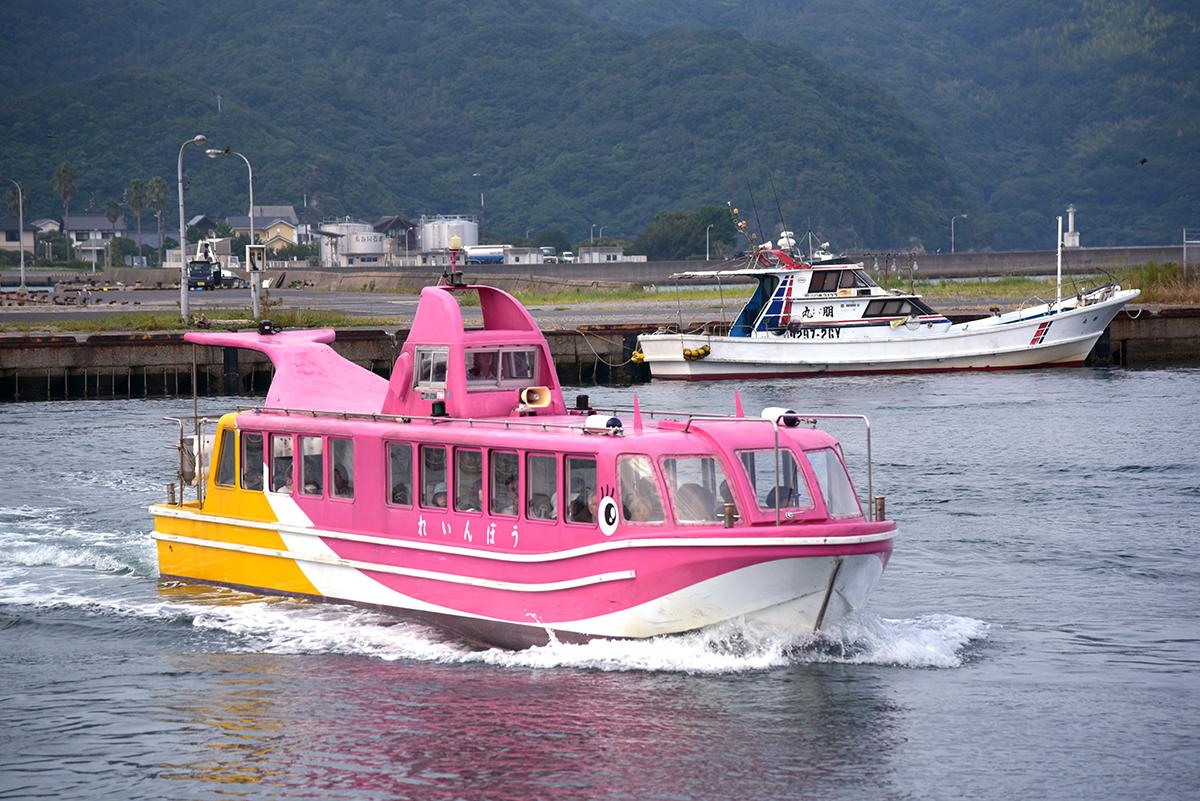 岡村さんが担当するイルカ船「れいんぼう」